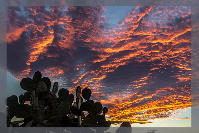 Abendstimmung am Tra-Tel RV Park | Tucson |Arizona |USA Foto: Christine Lisse