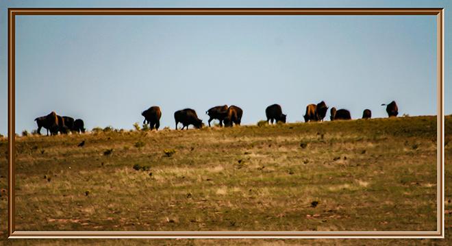 Debby und Faya im Zion National Park | Utah Foto: Christine Lisse