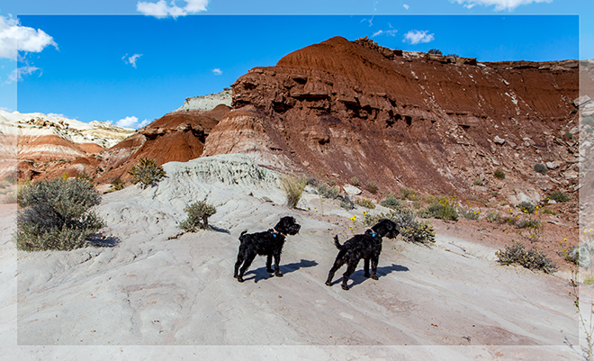Paria Rimrocks Toadstool Hoodoos |Utah Foto: Christine Lisse