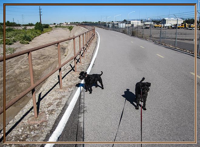 Debby und Faya   Santa Cruz River   Tucson   Arizona