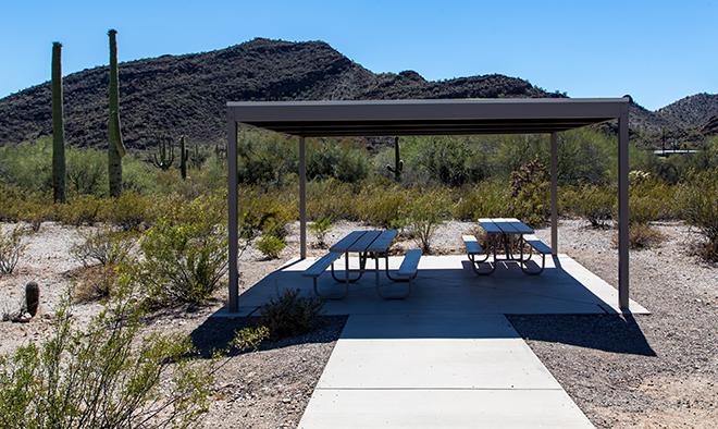 Organ Pipe Cactus National Monument | Arizona Foto: Christine Lisse