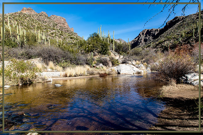 Bear Canyon | Sabino Creek | Tucson | Arizona Foto: Christine Lisse