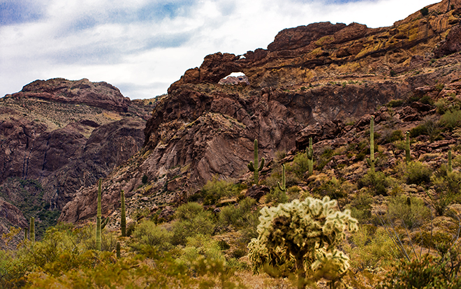 Arche Canyon |Organ Pipe Cactus National Monument | Arizona Foto: Christine Lisse