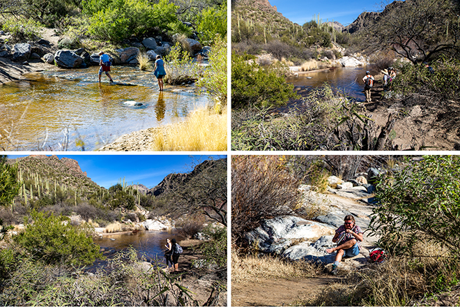 Bear Canyon | Sabino Creek | Tucson | Arizona Fotos: Christine Lisse