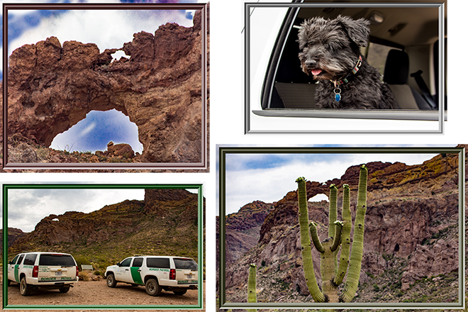 Arche Canyon |Organ Pipe Cactus National Monument | Arizona Fotos: Christine Lisse