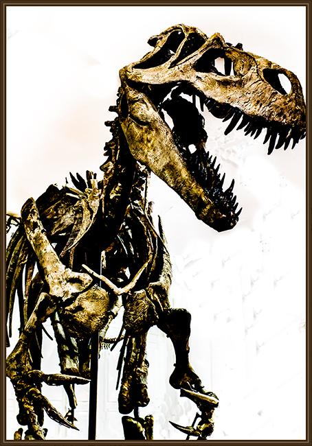 Tyrannosaurus rex  Gem and  Mineral Show 2016 Tucson Arizona